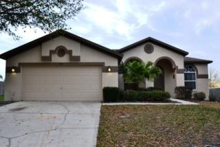 10311 Sedgebrook Dr, Riverview, FL 33569