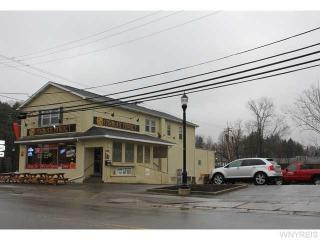 8796 State Rd, Colden, NY 14033