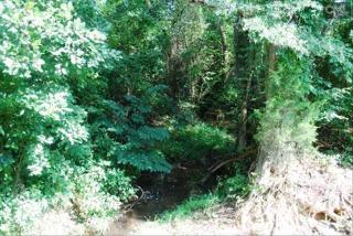 98 Pa Metts Road, Little Mountain SC