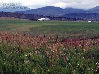 1751 Scenic Valley Drive, Loveland CO