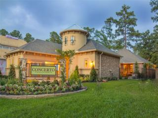 The Woodlands- Patios by Ryland Homes
