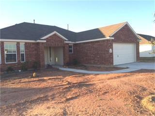 14195 Brushwood Drive, Willis TX