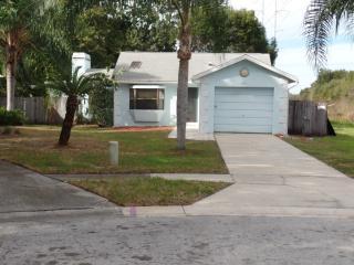 893 Green Valley Rd, Palm Harbor, FL 34683
