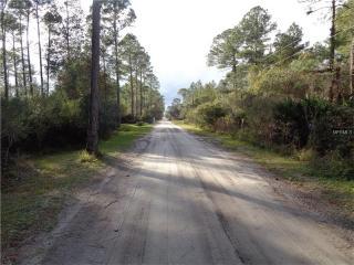 4033 Quail Nest Lane, New Smyrna Beach FL