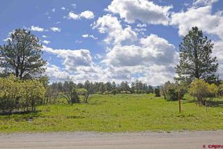 542 Bear Cub Drive, Ridgway CO