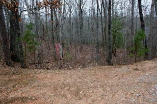 Tract 9b North Harris Crk, Ellijay GA