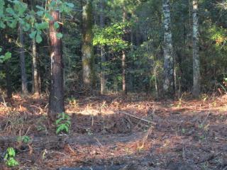 7A Wild Turkey Drive, Pine Mountain GA