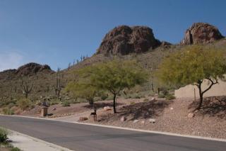 5249 South Gold Canyon Drive, Gold Canyon AZ