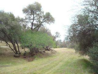 4.86 Ac Enchanted Oaks Drive, Coarsegold CA