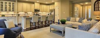 The Highlands at Stray Winds Farm - One Story Single Family by Ryan Homes