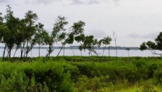 24 Harbour Isle Dr W #106, Hutchinson Island, FL 34949