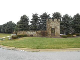 26047 South Greene Castle Drive, Monee IL