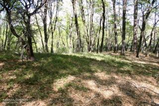 13728 Sontag Road, Grass Valley CA
