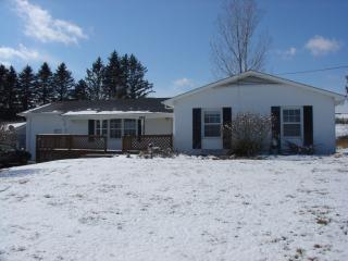 165 Mayapple Trl, Lewisburg, WV 24901