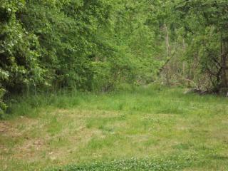 Gray Heron Glen, Lakeland TN