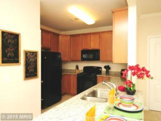 24691 Lynette Springs Terrace, Aldie VA