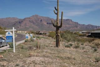 5371 South Gold Canyon Drive, Gold Canyon AZ
