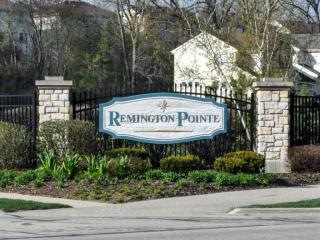 Remington Pointe South by Ryland Homes