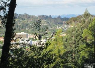Upper Fremont Drive, San Rafael CA
