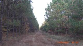 511 Roberts Road, Waynesboro GA