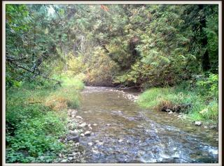 2821 Deep Lake Boundary Road, Colville WA