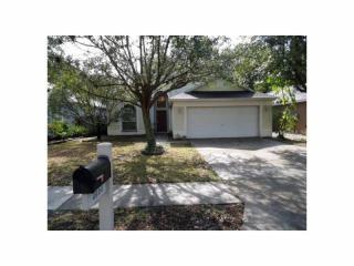 4624 Whispering Wind Avenue, Tampa FL