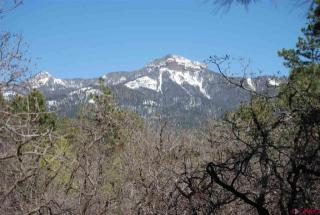 Tract 3 Needles View, Pagosa Springs CO