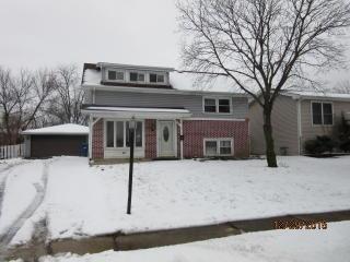 6853 Chestnut Street, Hanover Park IL