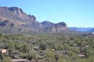 10332 East Latham Parcel T Way Lot, Gold Canyon AZ