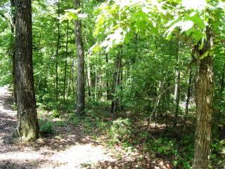 21 Toccoa Preserve Lane, Blue Ridge GA