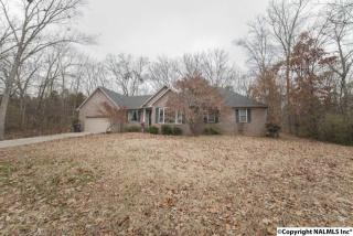 236 Forest Home Drive, Trinity AL