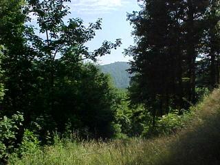 10 Chimney Ridge Drive, Topton NC