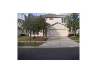 18129 Sandy Pointe Dr, Tampa, FL 33647