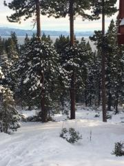 Idlewood Road, Tahoe Vista CA