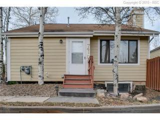 741 Columbine Village Dr #D, Woodland Park, CO 80863