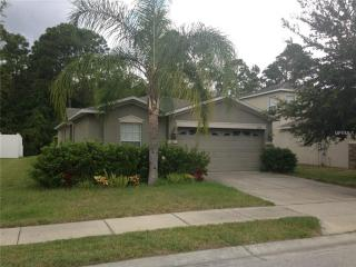12715 White Bluff Road, Hudson FL
