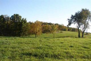 Tbd Elizabeth Scales Mound, Scales Mound IL
