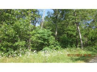 27 Wildwood Ridge, Beaufort MO