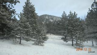 Tbd Delilah Drive, Canon City CO