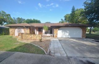 3452 Dove Hollow Ct, Palm Harbor, FL 34683