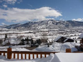 37065 William Rd, Steamboat Springs, CO 80487