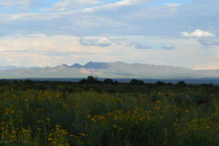 10367 North High Lonesome Road, Elfrida AZ