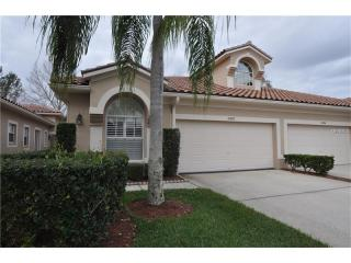 3882 Timber Ridge Court, Palm Harbor FL