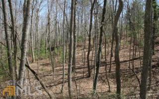 Arrowood Point #, 1, Blairsville GA