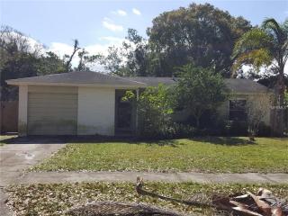 107 Sheryl Lynn Drive, Brandon FL