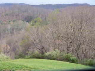 Lot 10 The Meadows Of Stone Coal Lake Drive, Horner WV