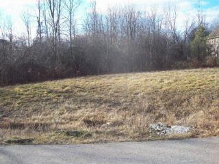 8252 Stagghorn Drive, Swartz Creek MI