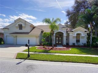 5263 Karlsburg Place, Palm Harbor FL