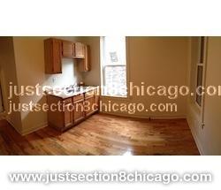 New City, Chicago, IL 60609