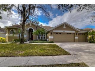 6107 Ibispark Drive, Lithia FL
